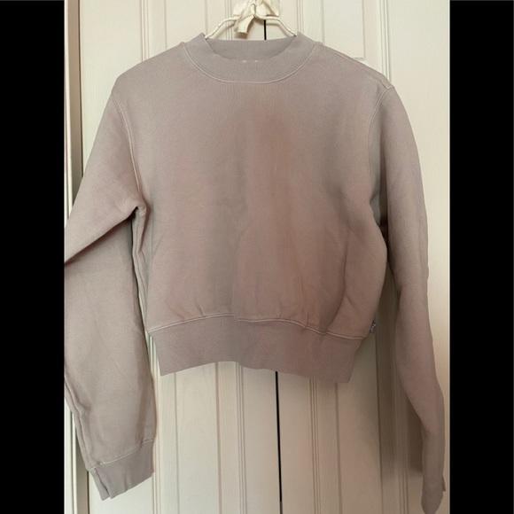 Aritzia Caral sweatshirt